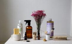 Ev İçin Kullanılabilecek Doğal Temizlik Malzemeleri Nelerdir?